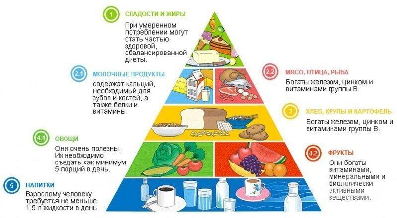 Как составить меню системы правильного питания для похудения  режим ... 0154eb6c804