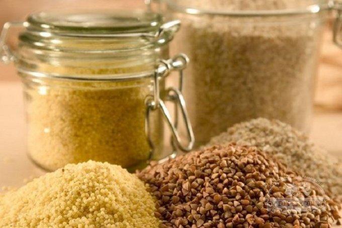 Пищевая моль (фото) и как ее вывести