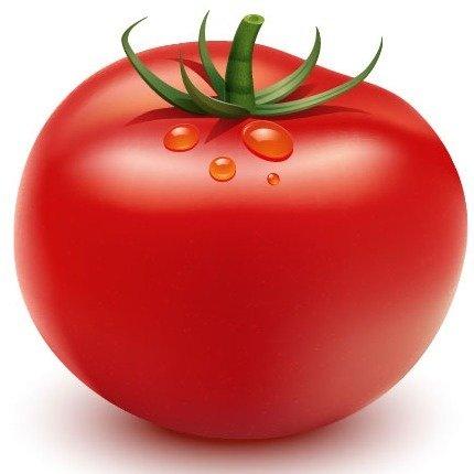 Картинки по запросу помидор